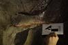 gruta_do_muro-pesob-08-12-2013-boomerang_12.jpg