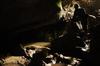 gruta_do_muro-pesob-08-12-2013-boomerang_30.jpg